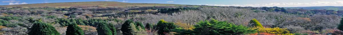 Dartmoor Panorama